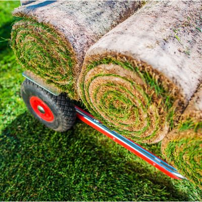 Turfing services sydney north shore